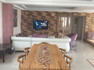 Great large apt. in  Kaohsiung  city。 高雄市超寬敞公寓 - Kaohsiung vacation rentals