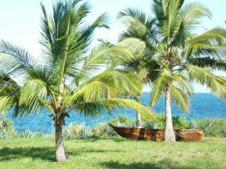 Tanzania paradise beach villa with lovely beach - Pangani vacation rentals