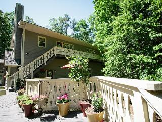 Tree Top Haven - Fletcher vacation rentals
