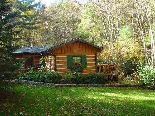 LOG CABIN WITH GUEST HOUSE AND OUTDOOR FIREPLACE, HOT TUB, WIFI & CREEK! - Fleetwood vacation rentals