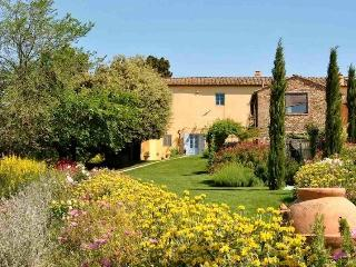 Chianti luxury villa, 5 bedrooms, pool, view - San Casciano in Val di Pesa vacation rentals
