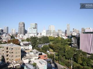 Amazing View Apartment Roppongi - Minato vacation rentals