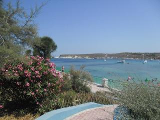 Sunshine Holiday Apartment (New Self Catering) - Marsascala vacation rentals
