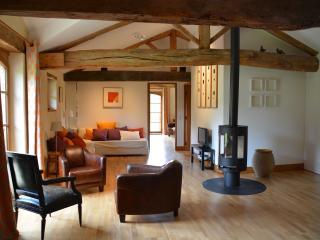 Le Chant du Buc, Loft, apartement de standing classé 5 étoiles. - Marssac-sur-Tarn vacation rentals