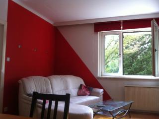 Cosy Apartment near Schönbrunn - Vienna vacation rentals