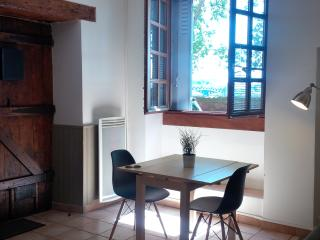Glamour and traditional flat in center river view - Toulouse vacation rentals