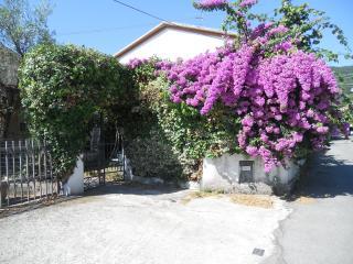 Casa bouganville - Ameglia vacation rentals