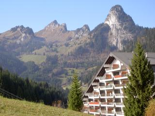 In Torgon, Switzerland, chalet apartment for 4 w balcony, stunning mountain view - Torgon vacation rentals
