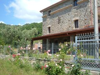 Romantic 1 bedroom Farmhouse Barn in Longobardi with A/C - Longobardi vacation rentals