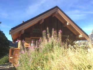 Chalets Des Fées - Saint Francois Longchamp vacation rentals
