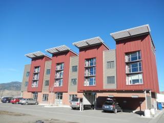 Bridger View Loft : Modern Loft Close to Downtown - Bozeman vacation rentals