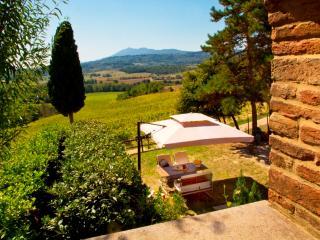 Poggio Cantarello Country Home - Chiusi vacation rentals