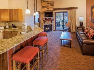 Nice Condo with Internet Access and A/C - Wisconsin Dells vacation rentals