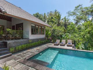 Perfect 3 bedroom Villa in Jalan Raya Tanah Lot - Jalan Raya Tanah Lot vacation rentals