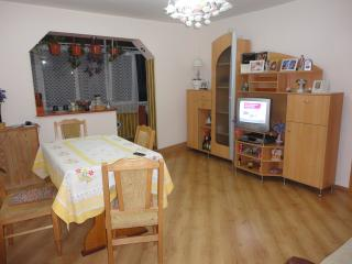 Cozy 2 bedroom Alba Iulia Condo with Internet Access - Alba Iulia vacation rentals