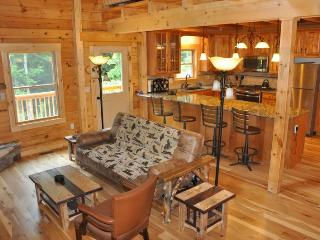 The Scratching Post - Upscale 3 Bedroom Cabin Near Fontana Lake with Dry Sauna - Almond vacation rentals