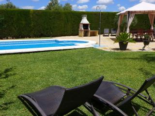 Nice villa in the countryside of Seville wifi free - Province of Seville vacation rentals