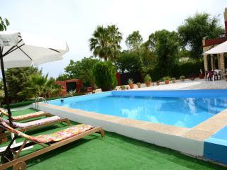 Holiday house in Countryside Seville, wifi free - La Puebla de Cazalla vacation rentals