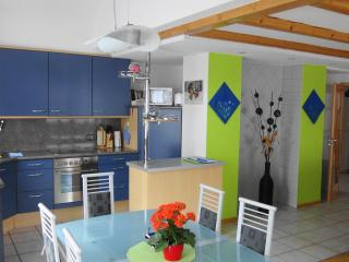Top equipped apartment in romantic Spessart ! - Frammersbach vacation rentals
