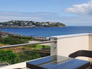 11 Water Meadows located in Torquay, Devon - Torquay vacation rentals