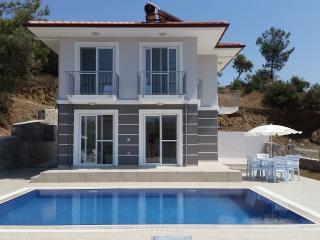 Villa Aydogan Sarigerme - Sarigerme vacation rentals