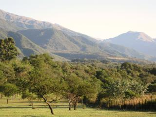 Nice Guest house with Garden and Books - Campo Quijano vacation rentals
