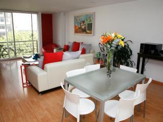 The Best LOCATION in La ROMA NORTE Neighborhood - Mexico City vacation rentals
