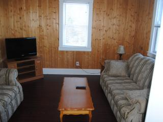 Beautiful 3 bedroom House in Arnold's Cove with Internet Access - Arnold's Cove vacation rentals