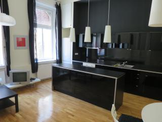 High end 2 bedroom - 2 bathroom centrally located - Budapest vacation rentals