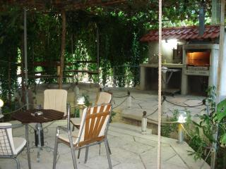 Apartments Minex (A quiet place for relaxation) - Trebinje vacation rentals