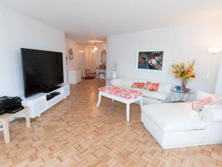 AMAZING NYC, VIEWS FROM EVERY ROOM, MIDTOWN, GYM - New York City vacation rentals