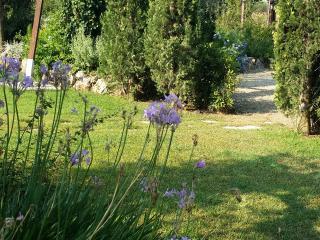 il casale della luce - Capalbio vacation rentals