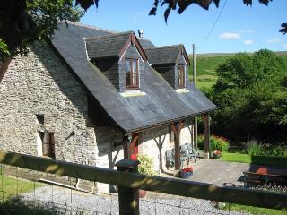 Blaendyffryn Fach  Rural place by open mountain - Llanllwni vacation rentals