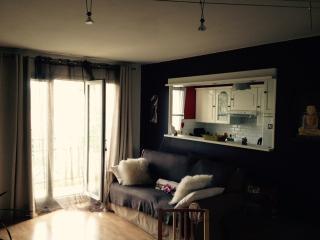 Vue sur les Hauts de Cormeilles - Cormeilles-en-Parisis vacation rentals