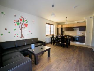 Klon 6 - Krakow vacation rentals