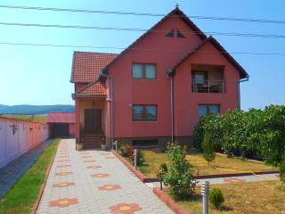 2 bedroom Bed and Breakfast with Internet Access in Sebes - Sebes vacation rentals