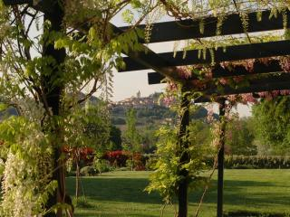 "B&B ""STEVANI"" in Monferrato - Rosignano Monferrato vacation rentals"