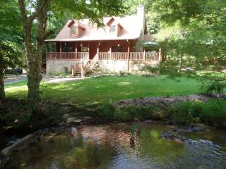 Creekside Paradise B and B North Guest Room - Robbinsville vacation rentals
