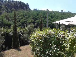 casa  con  giardino nella verdeggiante Toscana: - Ponte a Moriano vacation rentals