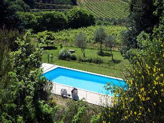 Vaison-le-Romaine Vaucluse, Villa 8p private pool, in the vine yards - Vaison-la-Romaine vacation rentals