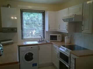 Spacious central studio apartment - Edinburgh vacation rentals