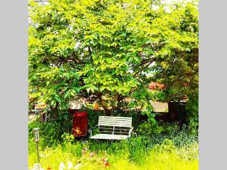 Spacious Garden+Center+2BR+View+Nature+FREE Wifi - Seoul vacation rentals