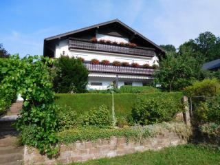 Ferienwohnung Haus Hofmann Freudenberg - Freudenberg vacation rentals
