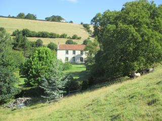Family Country house with wonderful views - Moorlinch vacation rentals