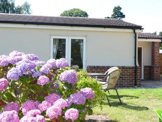 Modern detached holiday home in Foxhall, Ipswich - Ipswich vacation rentals