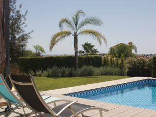 Luxury and modern 6-bedroom home - Nueva Andalucia vacation rentals