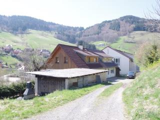 Nice Condo with Internet Access and Dishwasher - Todtnau vacation rentals