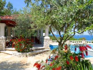 Villa Stone house - DREAM - Vela Luka vacation rentals