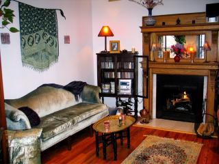 Ideal Location: Elegant, Quiet Condo Near Museums - Washington DC vacation rentals