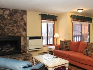 Nice 3 bedroom Angel Fire Apartment with Television - Angel Fire vacation rentals